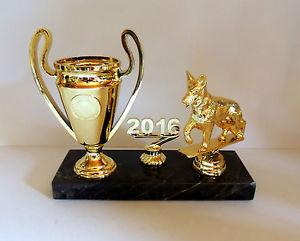 Pokal Turnier
